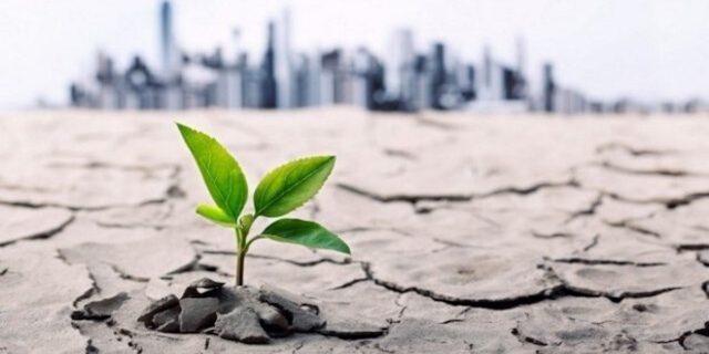 Klimatsmart lördag